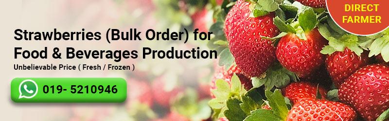 strawberry-bulk-order